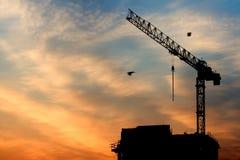 crane wschód słońca Zdjęcia Stock