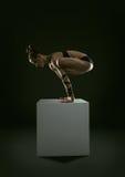 Crane yoga pose Royalty Free Stock Photo