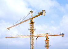 Cranes. Two Crranes on a blue clouds Background Stock Images