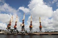Cranes. Stock Image