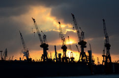 Cranes. In Hamburg harbor, germany Royalty Free Stock Photo