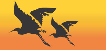 Cranes. Illustration of Two cranes flying Stock Photography
