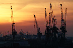 Cranes. Skyline from the harbor in Hamburg, germany Stock Images