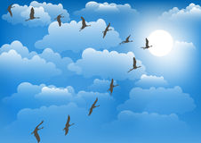 Cranes against the sky. Vector illustration. Stock Image