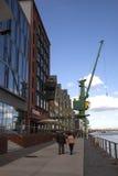 Cranes along the Rhine Royalty Free Stock Image