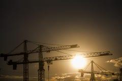 Free Cranes At Dusk Stock Image - 44350751