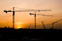 Free Cranes At Sunset Stock Photography - 8096462