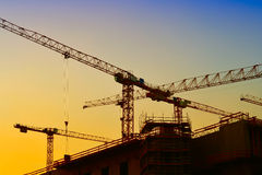 Cranes in Berlin Royalty Free Stock Photo