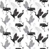 Cranes birds seamless pattern. Cranes birds seamless black and white pattern Royalty Free Stock Image