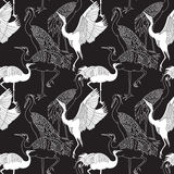 Cranes birds seamless pattern Royalty Free Stock Images