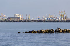Cranes in Constanta shipyard Royalty Free Stock Photo