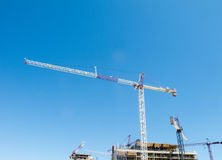 Cranes  on construction site Stock Image
