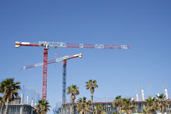 Cranes in a construction site, raw Royalty Free Stock Images