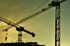 Cranes on a construction site at sunset Stock Photo