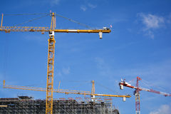 Cranes on a construction site Stock Image