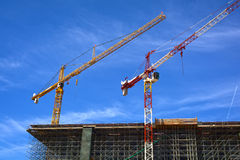 Cranes on a construction site Stock Images