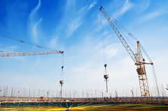 Cranes on the construction site Stock Image