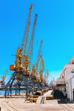 Cranes at the container port terminal Royalty Free Stock Photo
