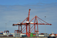 Cranes and containers on the dock Stock Images