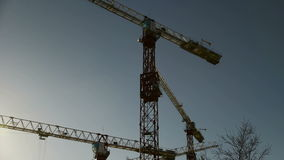 The cranes Royalty Free Stock Images