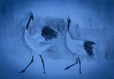 Cranes cry Stock Photos