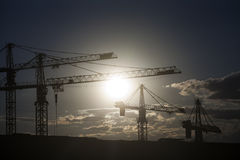 Cranes at dusk Royalty Free Stock Images
