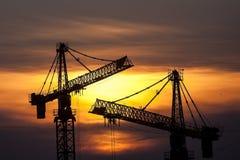 Cranes at dusk Royalty Free Stock Photography