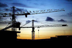 Cranes at dusk Royalty Free Stock Photo