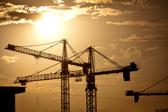 Cranes at dusk Royalty Free Stock Photos