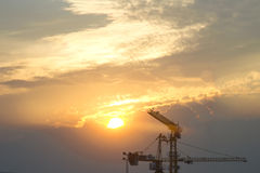 Cranes in everning Royalty Free Stock Photo