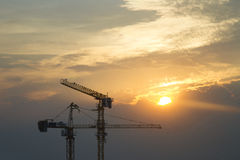 Cranes in everning Stock Images