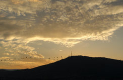 Cranes flying and mountain silhouette Royalty Free Stock Photos