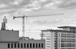 Cranes in Gdansk. Stock Photo