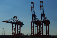 Cranes in Hamburg harbor Stock Image