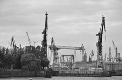 Cranes at Hamburg port. Docks in Hamburg port - Germany royalty free stock image