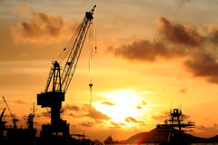 Cranes in a harbor Stock Images
