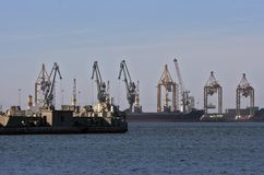 Cranes in the harbor Stock Photos