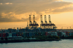 Cranes in a harbor at sunset Royalty Free Stock Photography