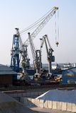 Cranes in harbour Royalty Free Stock Images