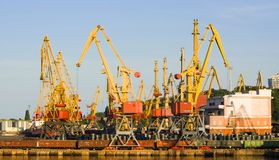 Cranes in the harbour Stock Image