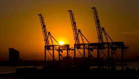 Cranes in the harbour at the sunset, Durban South Africa Royalty Free Stock Photography