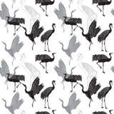 Cranes il modello senza cuciture degli uccelli Immagine Stock Libera da Diritti