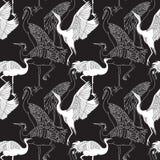 Cranes il modello senza cuciture degli uccelli Immagini Stock Libere da Diritti