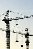 Cranes il verticale Fotografia Stock Libera da Diritti