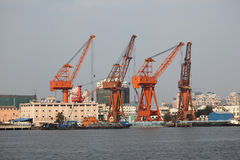 Cranes at the industrial port Stock Images