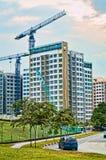 Cranes la costruzione che sviluppa la struttura moderna della città Immagine Stock Libera da Diritti