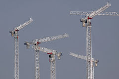 Cranes for a Large Construction Project Royalty Free Stock Photo