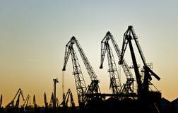 Cranes like giraffes Royalty Free Stock Image