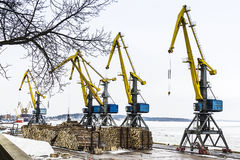 Cranes for loading forests in the sea port Royalty Free Stock Image