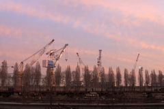 Cranes of Marghera port Stock Photography
